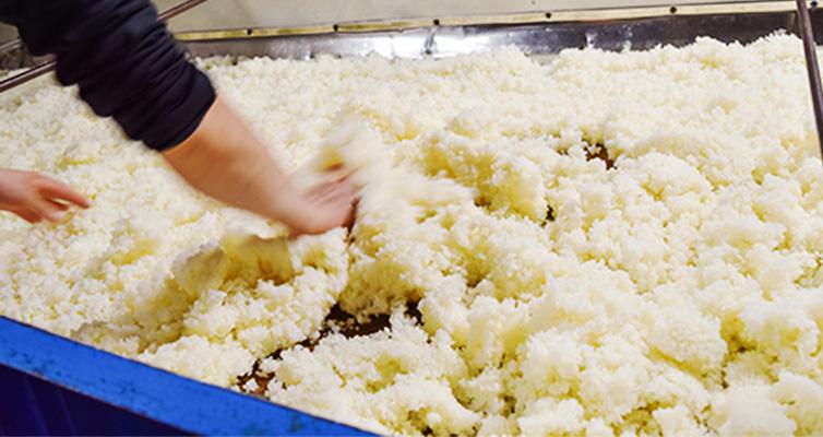 特別栽培米 純米酒