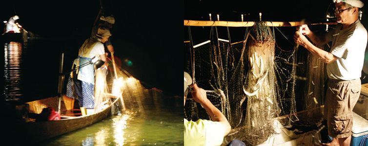 火振り漁写真