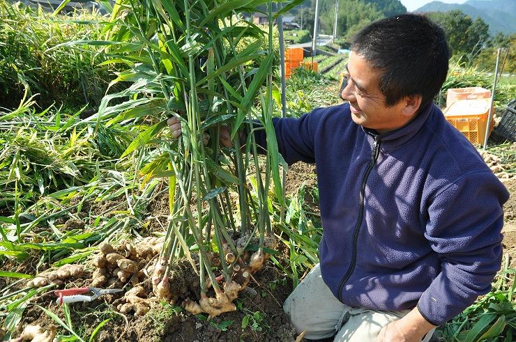 農薬も化学肥料も使わずに野菜をつくる桐島畑