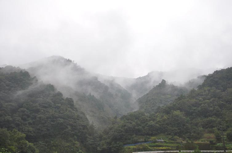 四万十町は霧の町