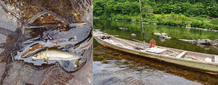 鮎と船の写真