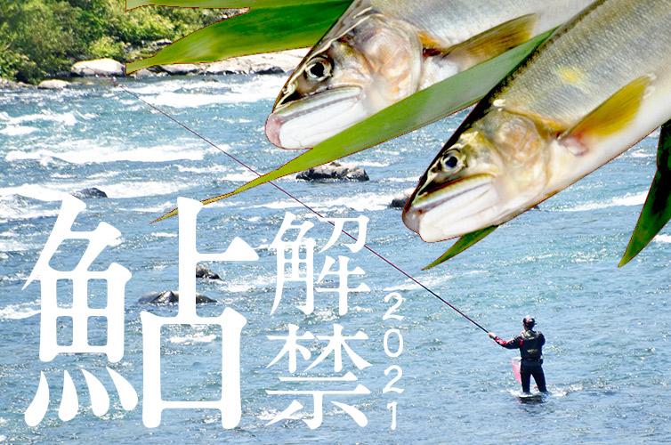 四万十川 友釣り 天然鮎
