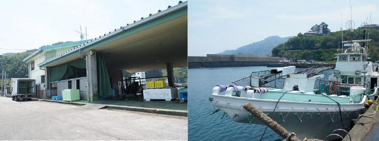 市場か港か鰹船の写真