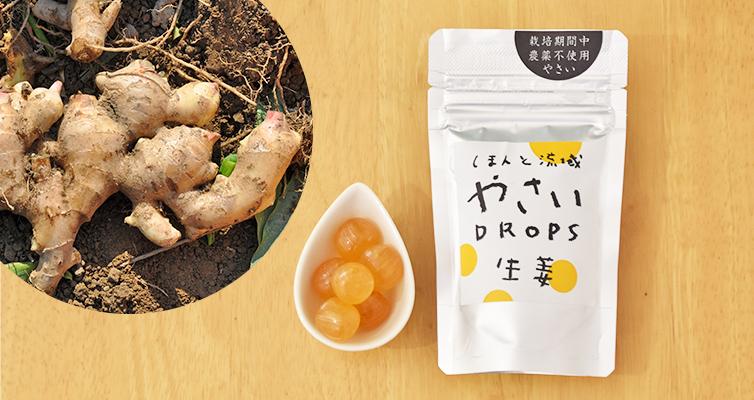生姜 ショウガ Drops 飴 アメ