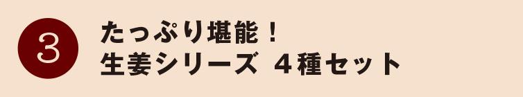 魅力3 たっぷり堪能!生姜シリーズ 4種セット