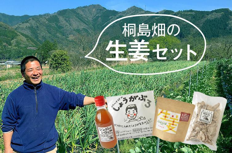 桐島畑の生姜セット
