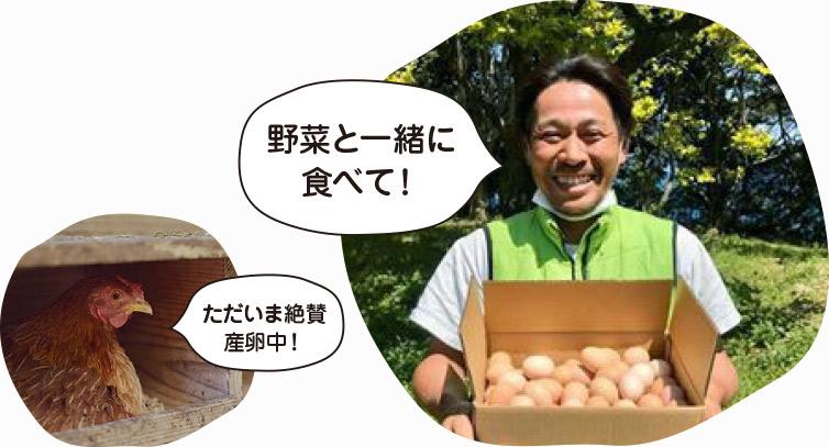 一圓さん 卵