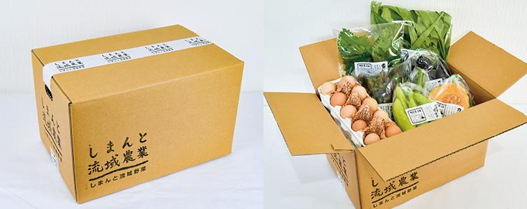 有機農業 農薬不使用 化学肥料不使用 季節野菜 新鮮野菜 ボリュームアップ