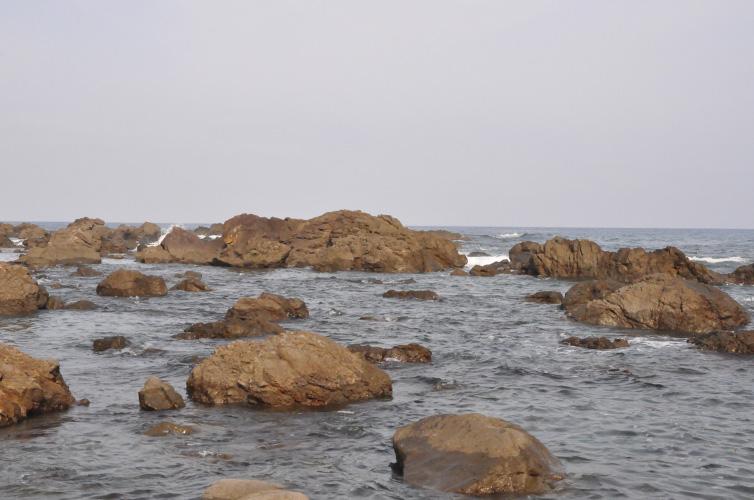 高知県黒潮町の海水を使用