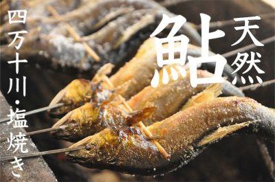 四万十川の天然鮎の塩焼き レンジでチン 簡単調理